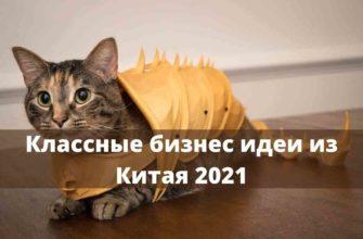 Бизнес в Китае которого нет в России 2021