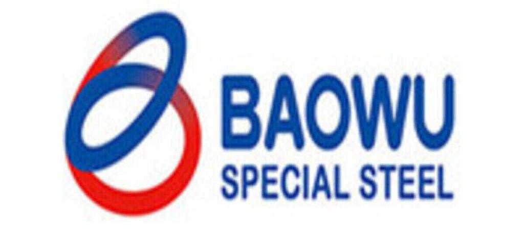 компания BAOWU Китай
